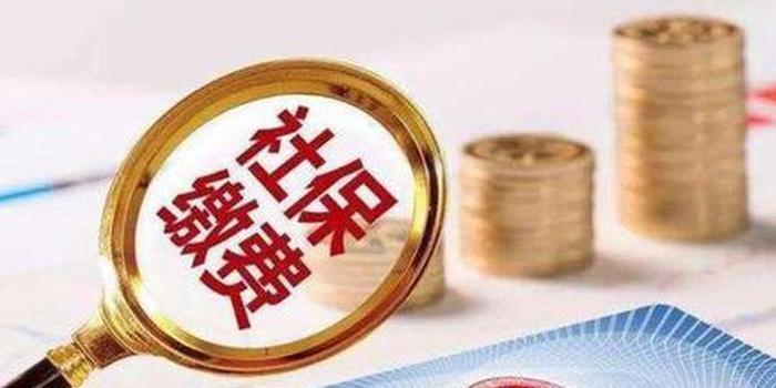国家税务总局成立社会保险司并任免工作人员